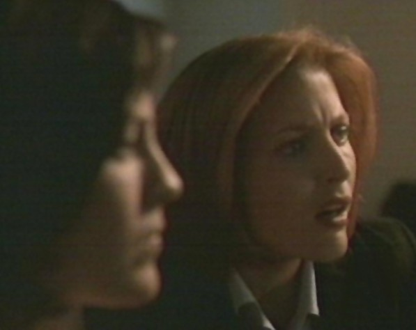 'Wait a minute. Stop it,' Scully instructed.